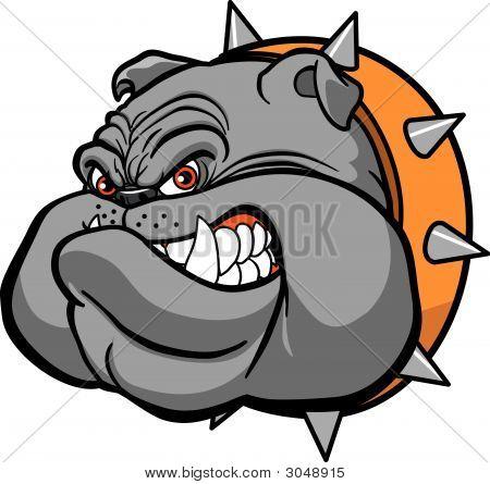 Cabeza de Bulldog