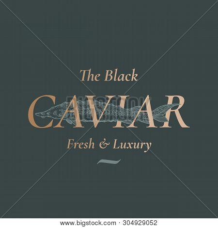 The Black Caviar Seafood Abstract Vector Sign, Symbol Or Logo Template. Hand Drawn Sturgeon Or Belug