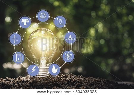 Light Bulbs With Glowing One. Technology And Creativity Concept With Light Bulbs And Copy Space For