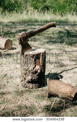 The Ax Is Stabbed With A Blade Into The Stump. Axe For Removing Tree Stumps Roots.