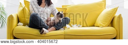 Cropped View Of Allergic Woman Sitting With Cat On Yellow Sofa Near Crumpled Paper Napkins, Banner
