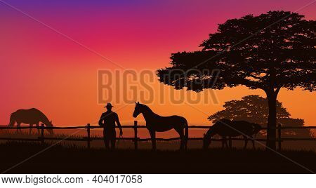 Cowboy And Horse Herd Behind Wooden Fence - Grazing Animals And Rancher At Sunset Field With Trees V