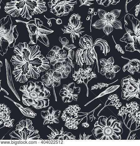 Seamless Pattern With Hand Drawn Chalk Anemone, Lavender, Rosemary Everlasting, Phalaenopsis, Lily,