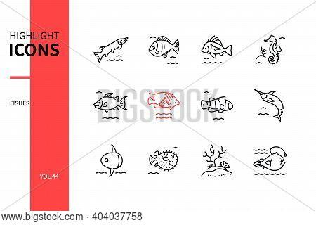 Fish Species - Modern Line Design Style Icons Set