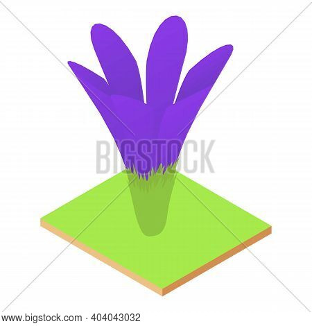 Crocus Flower Icon. Isometric Illustration Of Crocus Flower Vector Icon For Web