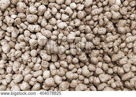 Lightweight Expanded Clay Aggregate Macro Background. Lightweight Hydro Material Pellet Balls.