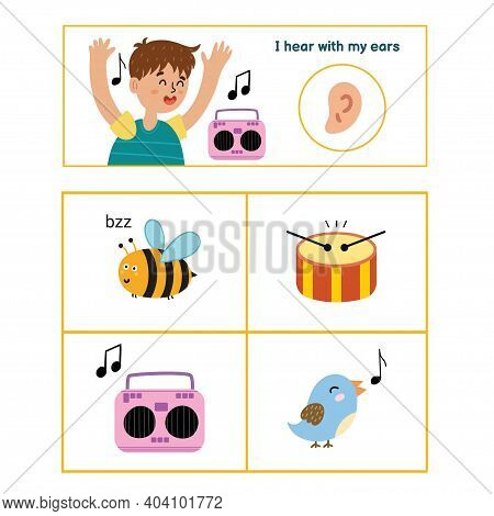 Five Senses Poster. Hearing Sense Presentation Page For Kids