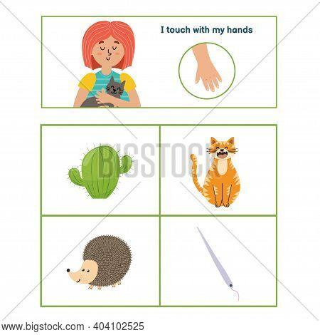 Five Senses Poster. Touch Sense Presentation Page For Kids
