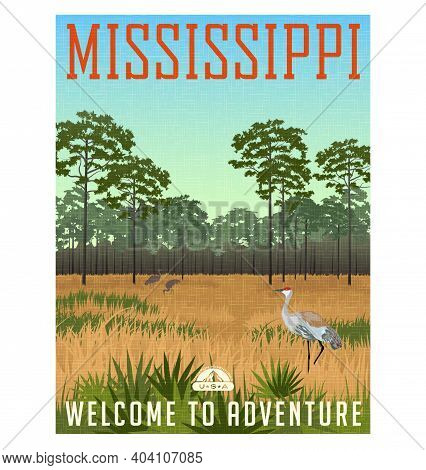 State Of Mississippi Travel Poster Or Sticker. Vector Illustration Of Sandhill Cranes And Pines In W