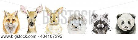 Watercolour Animal Set. Fox, Fawn, Rabbit, Hedgehog, Raccoon And Panda. Watercolor Illustration On W