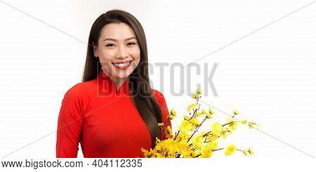 Vietnamese Lunar New Year. Women Wear Vietnam Tradition Ao Dai With Hoa Mai Tree (ochna Integerrima)