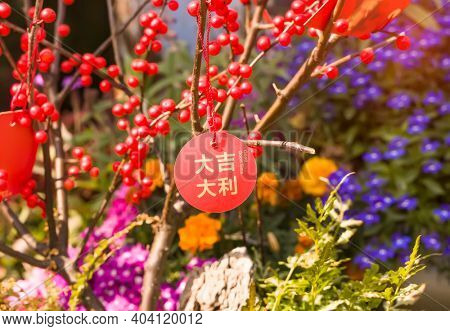 Lucky knot hanging on flower for Chinese new year greeting,Chinese character means good blessing for new year