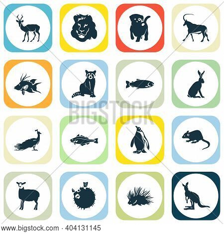 Fauna Icons Set With Raccoon, Porcupine, Hogfish And Other Rat Elements. Isolated Vector Illustratio