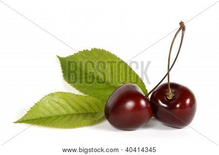 The red cherries
