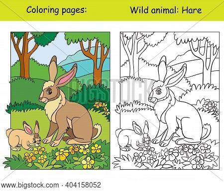 Vector Coloring Page With Cute Hare In The Forest. Cartoon Isolated Colorful Illustration. Coloring
