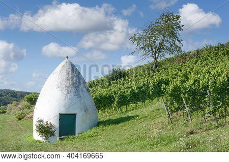 Vineyard Landscape With Trullo In Rhinehessen Wine Region,rhineland-palatinate,germany