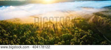 Majestic misty view of tree tops with the rays of morning light. Location place Dniester canyon of Ukraine, Europe. Aerial photography, drone shot. Photo wallpaper. Discover the beauty of earth.
