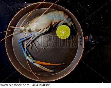 Scampi ,attukonchu, Jinga , Golda Chingdi , Dublin Bay Prawn ,nephrops Norvegicus Or Norway Lobster