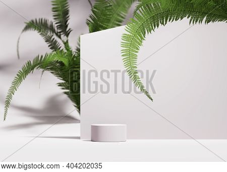 3d Podium Display On White Background With Green Fern. Cosmetic, Beauty Product Promotion  Pedestal