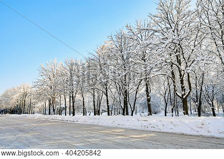 Winter Street In Snow. Beautiful Winter Trees Branches With A Lot Of Snow. Snow Covered Trees Along