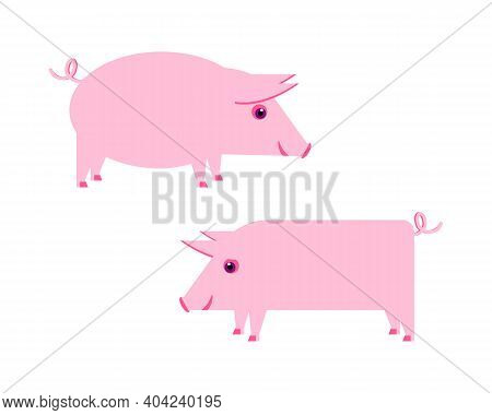 Vector Illustration With Funny, Cute, Pink Piglets. Flat Design..