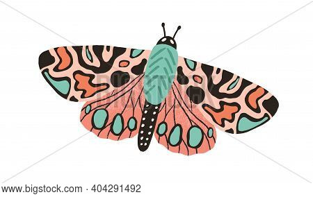 Gorgeous Butterfly With Bright Multicolor Wings And Antennae Isolated On White Background. Beautiful