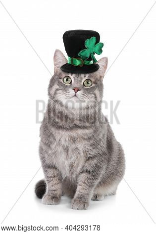 Cute Gray Tabby Cat With Leprechaun Hat On White Background. St. Patrick's Day