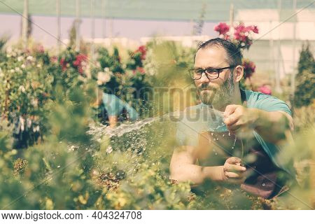 Serious Farmer Watering Garden From Hose And Looking At Plants. Frowning Bearded Male Gardener In Gl