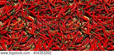 Red Cayenne Peppers (capsicum Annuum). Also Known As Guinea Spice, Cow-horn Pepper, Red Hot Chili Pe