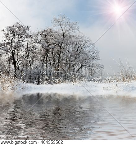 landscape with frozen trees near lake water surface at winter time
