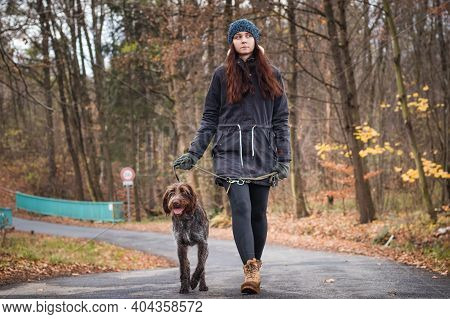 Young Brunette Is On A Walk With Her Female Rough-coated Bohemian Pointer Breed. An Amazing Couple W