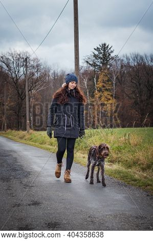 Young Breeder Of Czech Breed Is Walking Along The Road With Her Best Friend. Bohemian Wire-haired Po