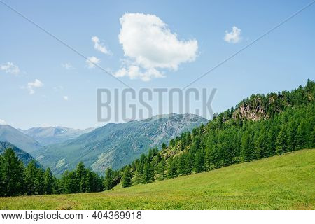 Beautiful View To Green Forest Hill With Rock And Mountain Range. Awesome Minimalist Alpine Landscap