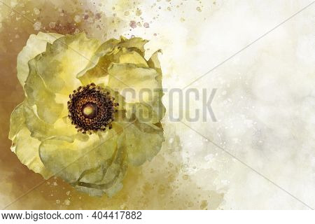 Watercolor Painting Of A Anemone Coronaria Flower, Known As The Chinese Anemone Or Japanese Anemone,