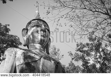 Phayao, Thailand - Dec 6, 2020: Zoom View Black And White Front Right Buddha Statue In Green Forest