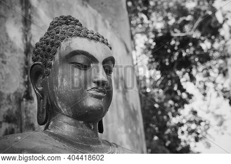 Phayao, Thailand - Dec 6, 2020: Front Right Black And White  Headshot Buddha Statue On Forest Backgr