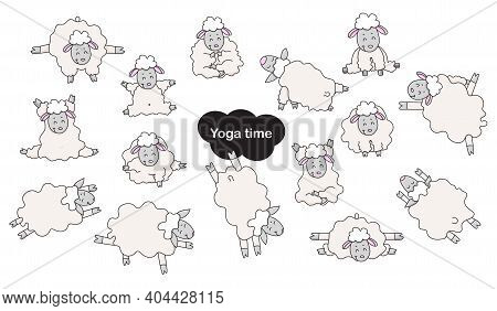 Yoga Pets. Cute Funny Sheep Athletes Get Up In An Asana And Are Engaged In Fitness, Gymnastics And M