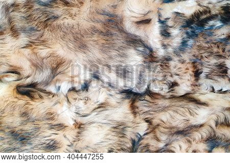 Brown And Black Wool Texture Background. Faux Fur. Texture Of Brown And Black Fluffy Fur, Close Up O