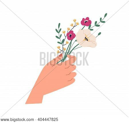 Female Hand Holding Elegant Small Bouquet Of Delicate Wild Flowers. Beautiful Spring Bunch Of Anemon