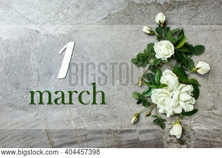 March 1st . Day 1 Of Month, Calendar Date. Stylish Roses Flat Lay. White Roses Border On Pastel Grey