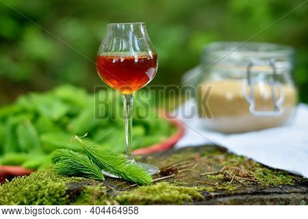 Syrup Of Spruce Needles In A Glass On A Stalk With Cane Sugar And Spruce Shoots Needles In The Backg