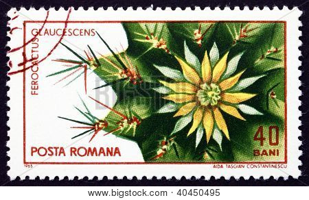 a stamp printed in the Romania shows Ferocactus Glaucescens, Cactus, circa 1965 poster