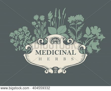Vector Banner Or Label With The Words Medicinal Herbs. Hand-drawn Illustration With Silhouettes Of M