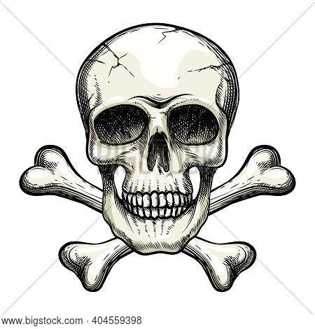 Vector Skull And Crossbones On White Background