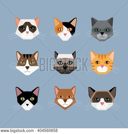 Set Of Cats Heads In Flat Style. Face Kitten, Whiskers And Ears, Muzzle And Wool. Vector Illustratio