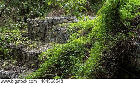 Terraced Walls Constructed Of Stones Encased In Wire Netting (gabions), Surrounded By Plants