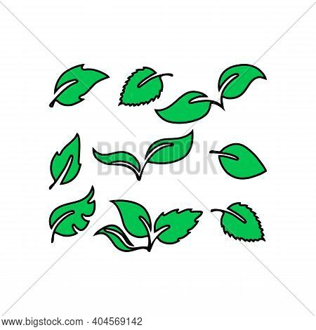 Green Leaves Pattern Background. Nature Tropical Green Leaves Seamless Pattern. Vector Illustration