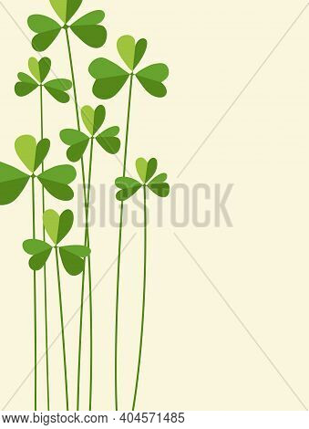 St. Patrick's Day Design With Tall Cartoon Shamrocks. Space For Text. Vector Design For Banners, Gre