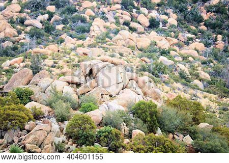 Large Rocks And Boulders Surrounded By Chaparral Plants On Arid Badlands Taken At The Mojave Desert