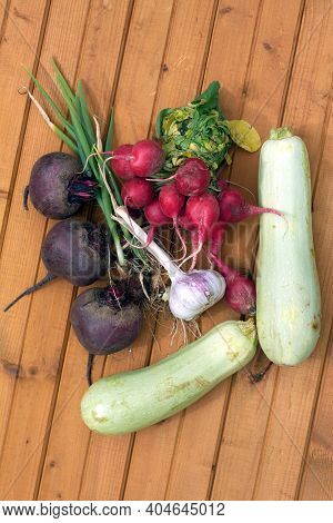 Still Life With Crop Of Ripe Beetroots, Carrots, Onion, Radishes, Squash And Garlic On Brown Wooden